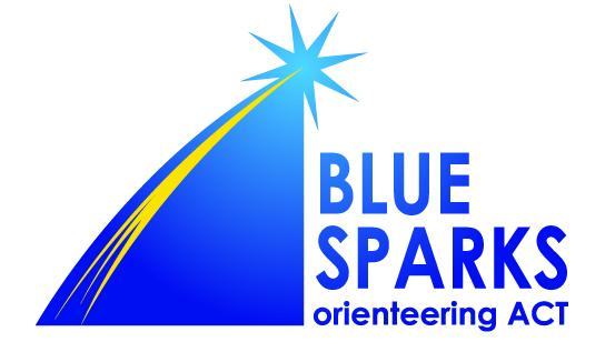 Blue sparks Logo