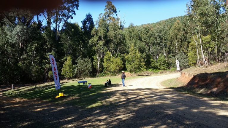 Young Bushies Flying at MTBO