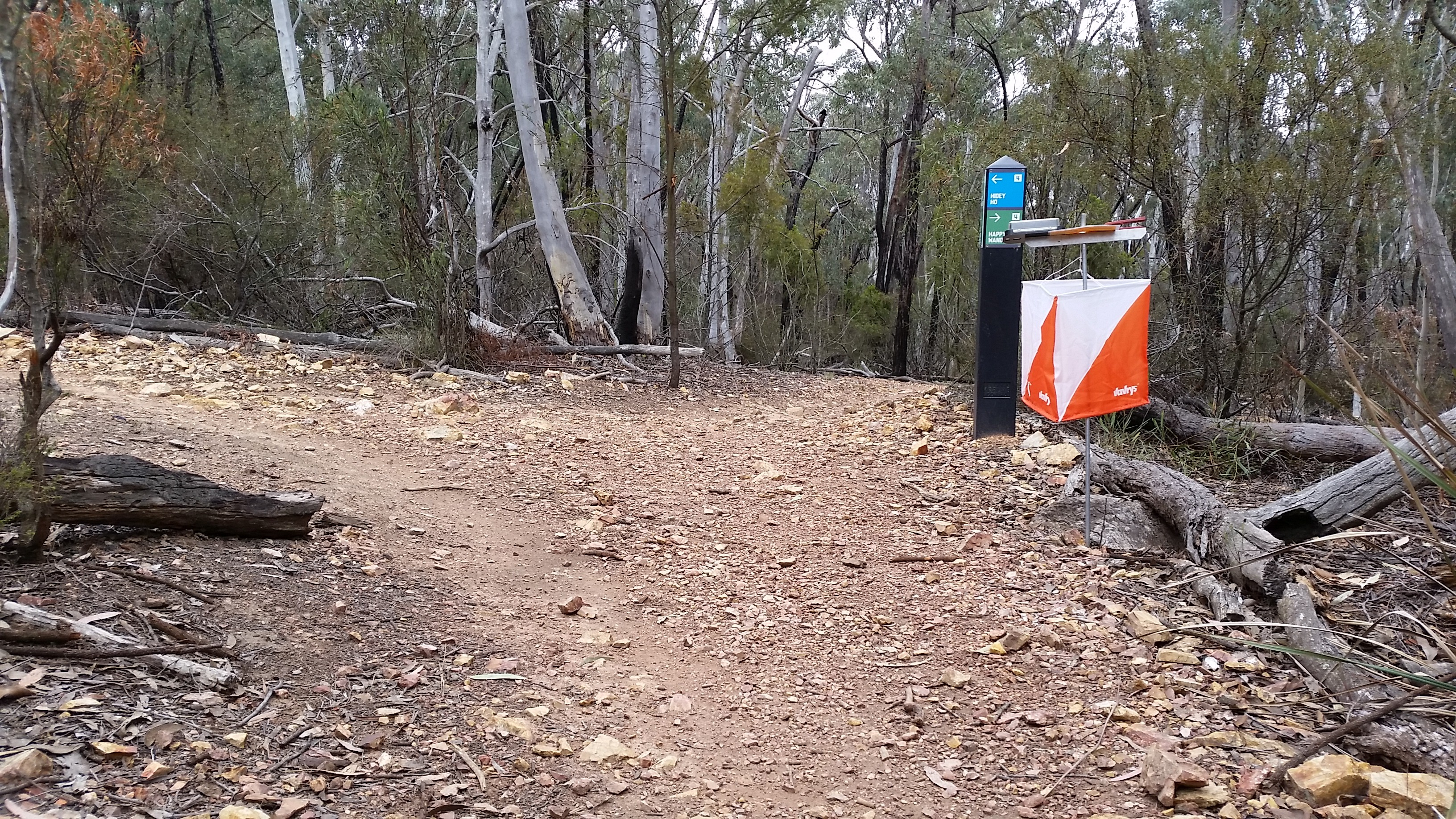Riders challenged at ACT MTBO Championships