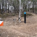 Bruce Ridge MTBO – This Sunday