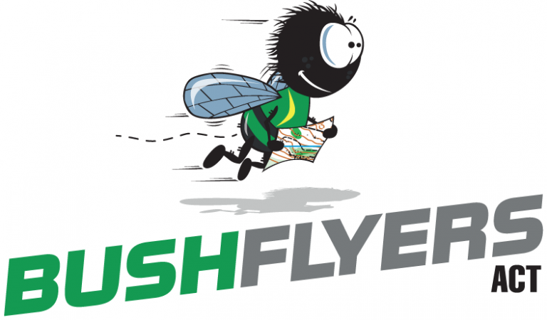The Buzz – Bushflyers News November 2019