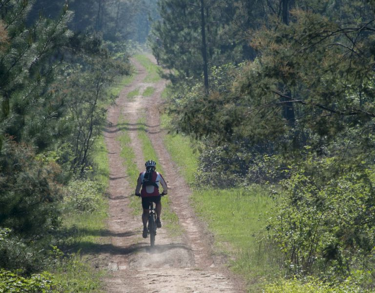 MTBO Championships – This Weekend