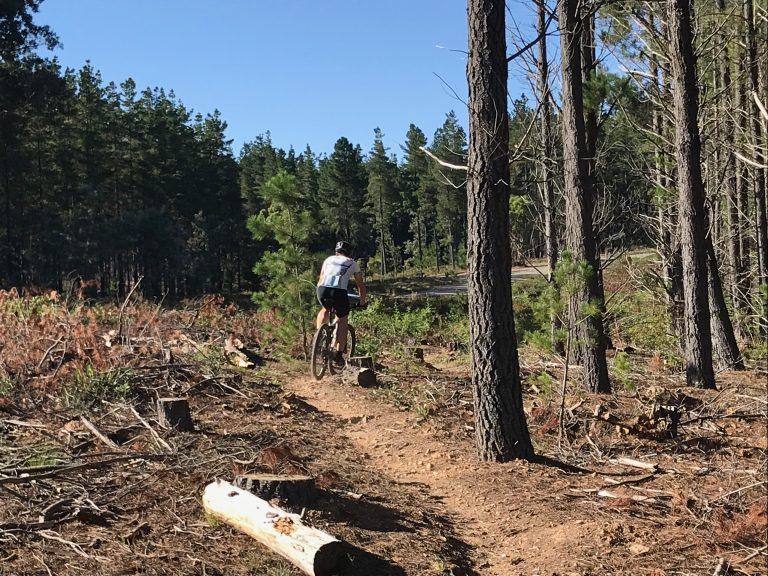 Enter Now for MTBO #1