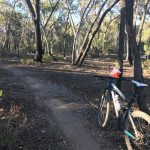 Entries Open for MTBO #2